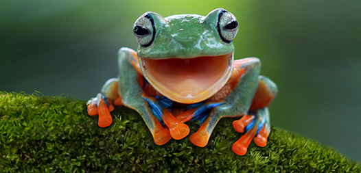 Metodo Eat that frog